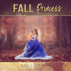 Image of Fall Forest Princess Sessions