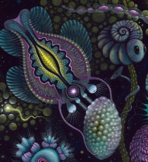 "Image of MICROVERSE II - 22 X 22"" Signed & Numbered Limited Edition of 50"