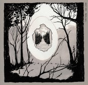 "Image of Insect Ark ""Portal/Well"" LP pre-order"