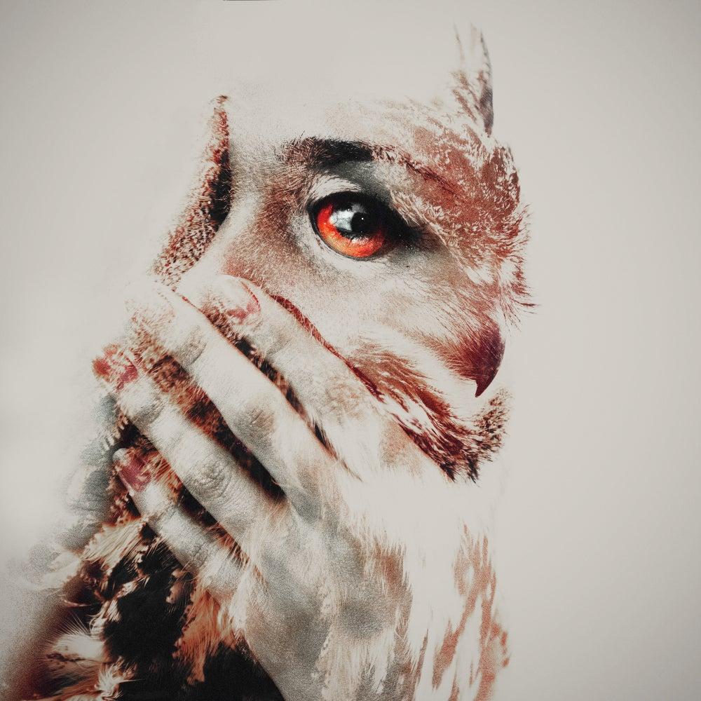 Image of Oana & The Owl