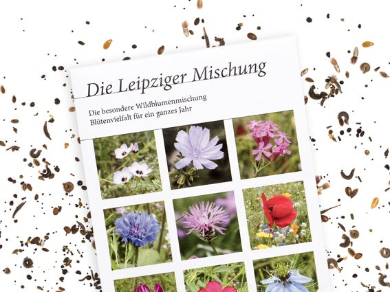 Image of BLUMENWIESE Leipziger Mischung
