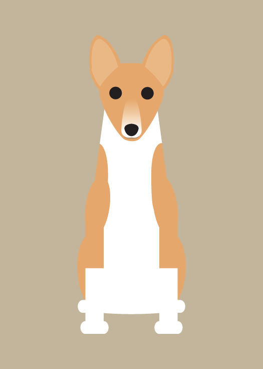 "Image of ""B"" Dog Collection #2: Basenji, Blue Tick Hound, Brittany Spaniel"