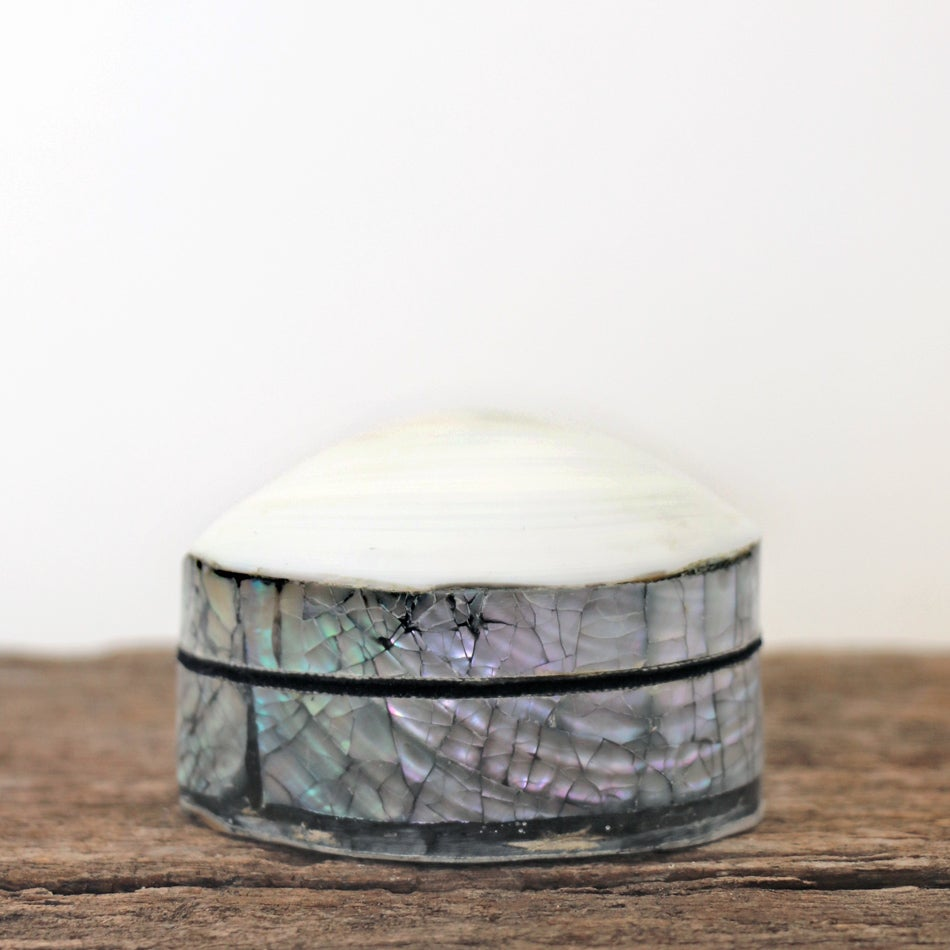 Image of Folly Shell Box