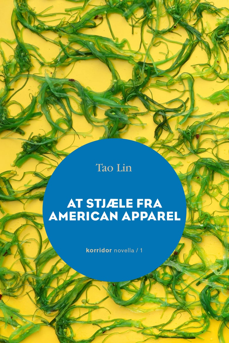 Image of Tao Lin - At stjæle fra American Apparel