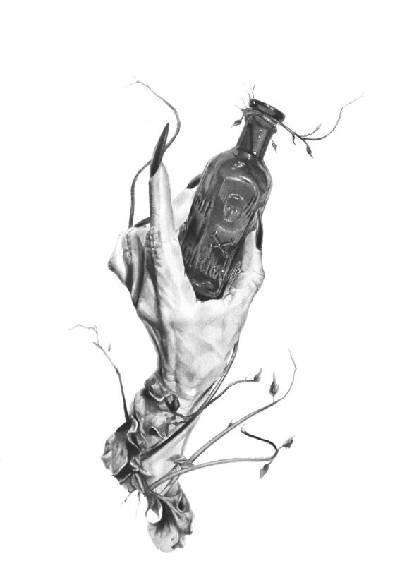 Image of Poison 9 x 12