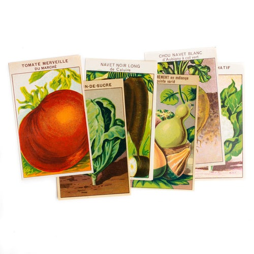 Image of 1920's French Vegetable Seed Labels - Set of 6