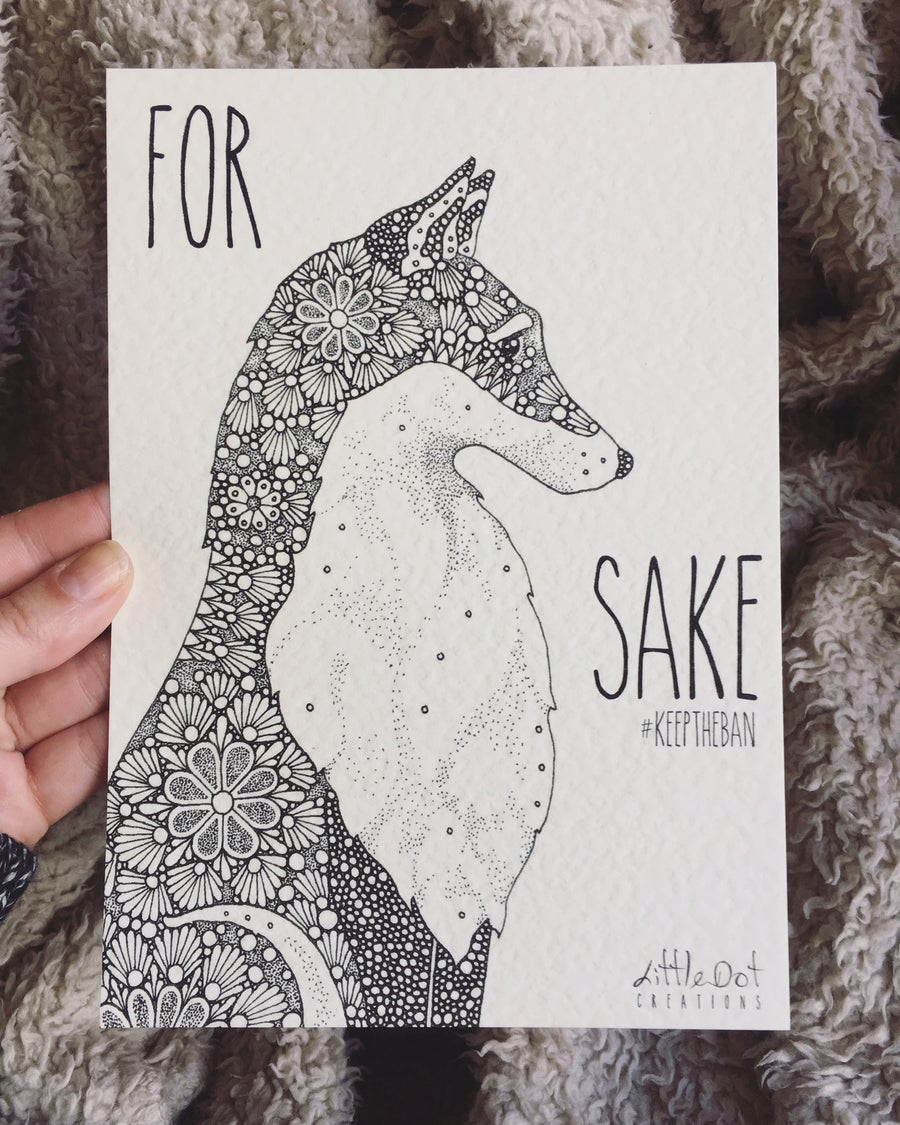 Image of For Fox Sake!