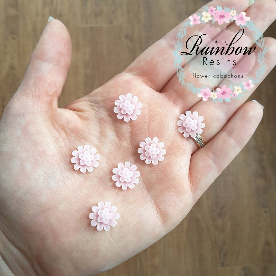 Image of Baby pink carnations x 10