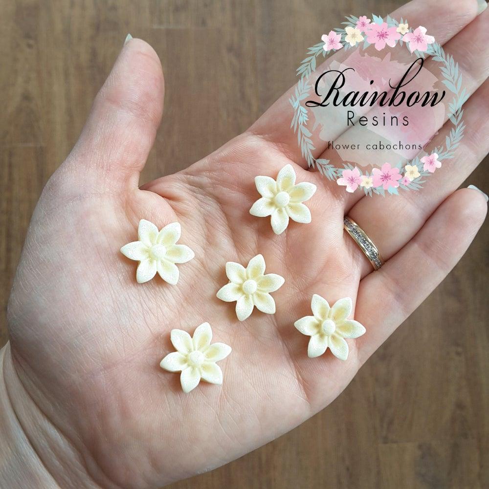 Image of Cream sparkly oriental lillies x 10