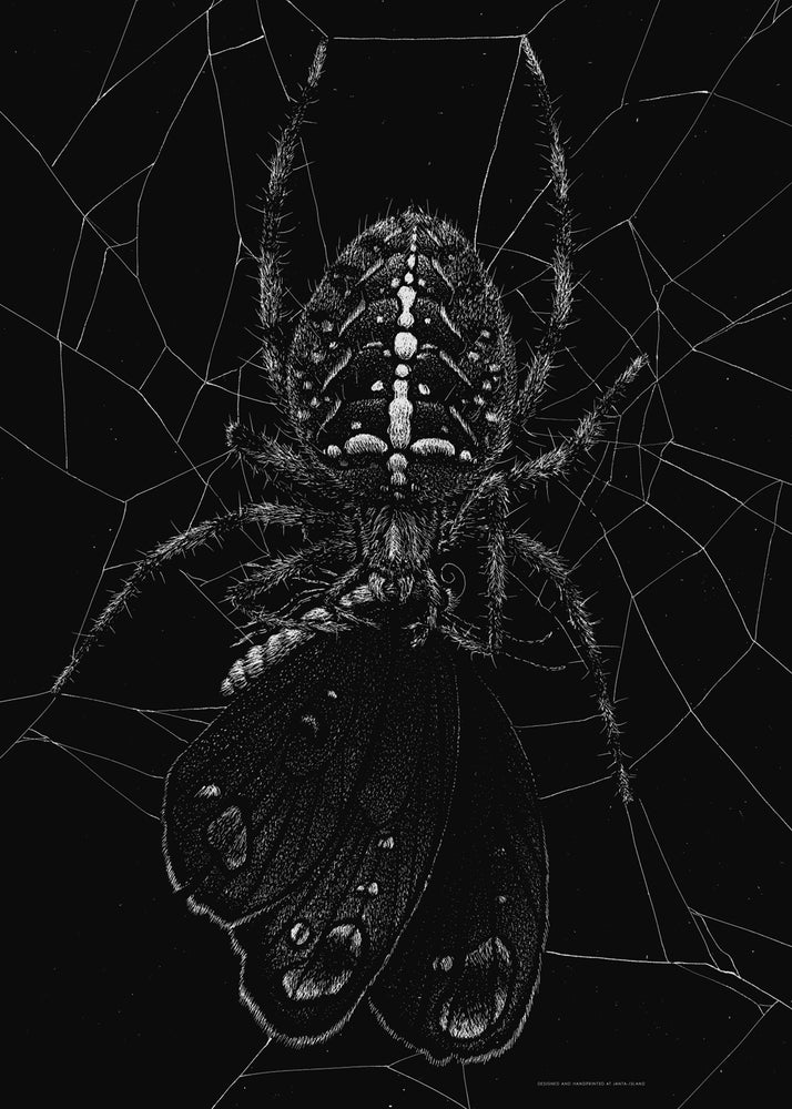 Image of »Spinne« Artprint