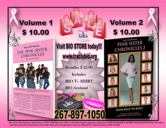 Image of The Pink Sister Chronicles Collectors Bundle