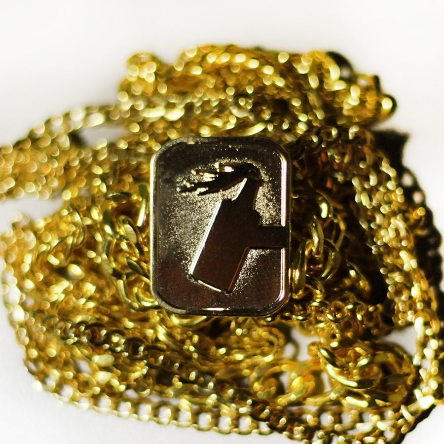 Image of Gold C logo Pin