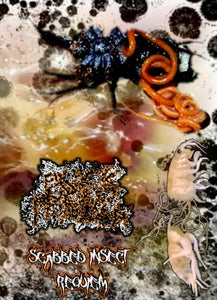"""Image of Black Mold Phallanx """"Scabbed Insect Requiem"""" CD"""
