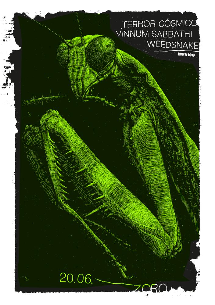Image of »Zoro Poster #11«