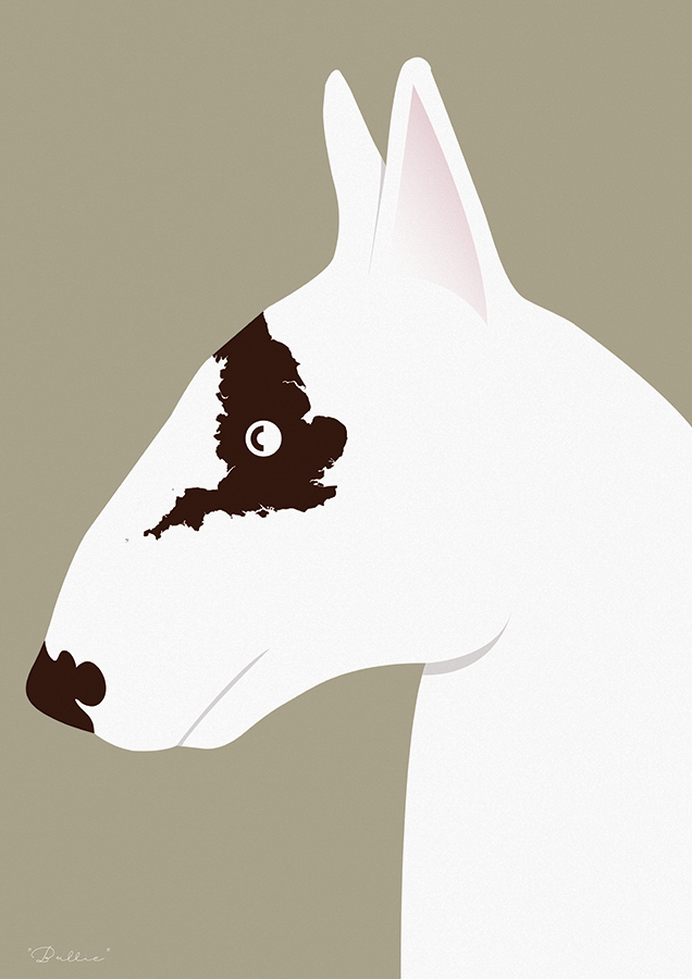 Image of Different Breeds - English Bull Terrier
