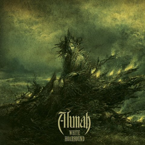 Image of Alunah - White Hoarhound (25 August)