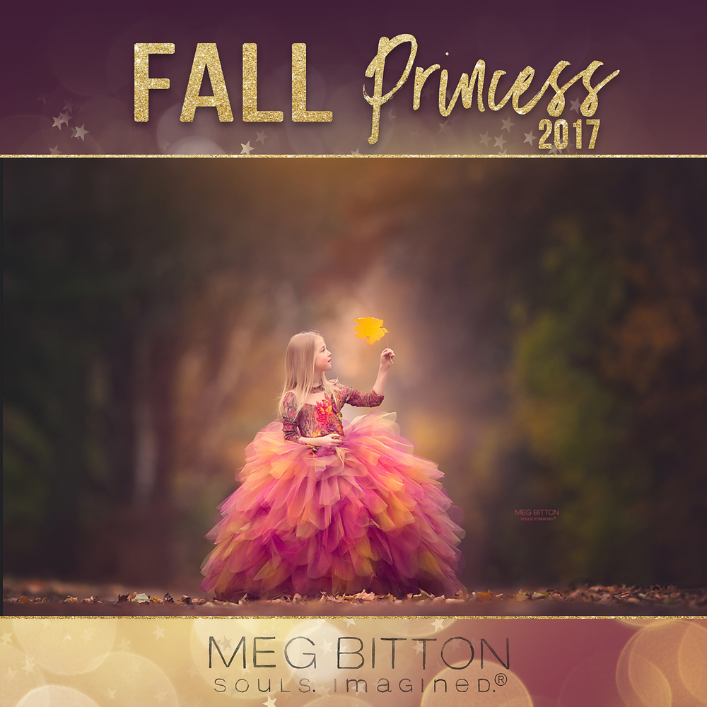 Image of Fall Princess Mini Sessions-November 4th, 2017