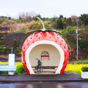 Image of Japanese Strawberry Bus Stop Photographic Print