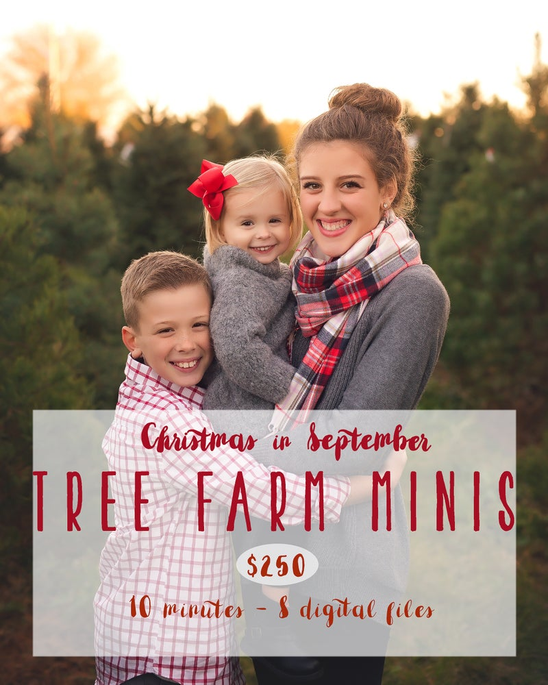 Image of Christmas in September - Tree Farm Minis!