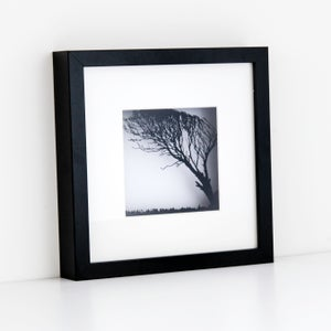 Image of Framed Paper Cut Windy Tree