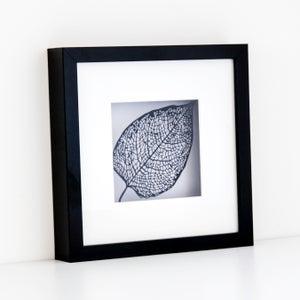Image of Framed Paper Cut Leaf