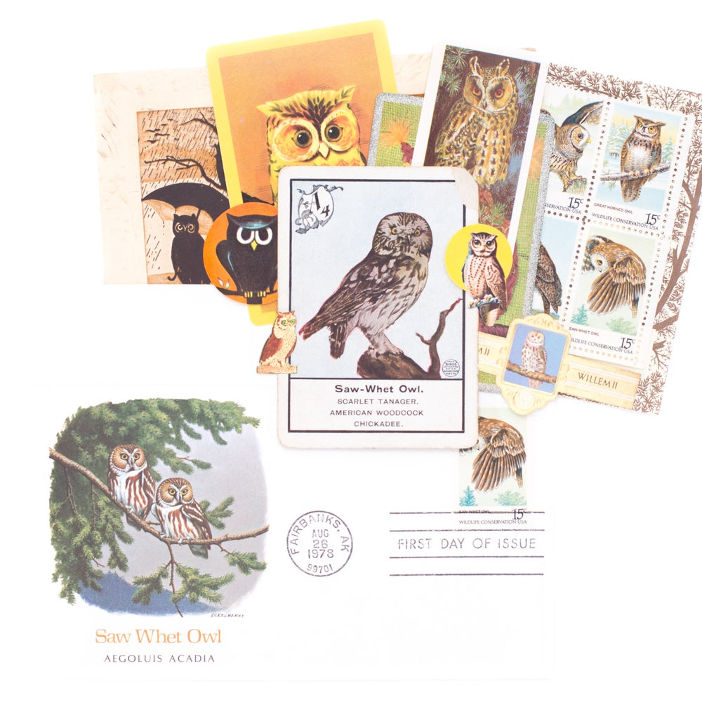 Image of Owl Envelope No. 1 with Owl Ephemera