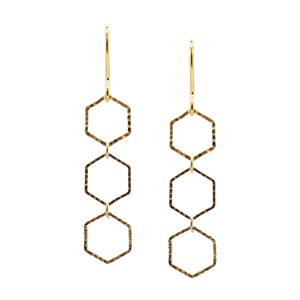 Image of Polygon Hexagon Earrings