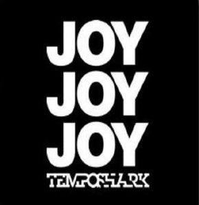 Image of 'Joy Joy Joy' (T-shirt)