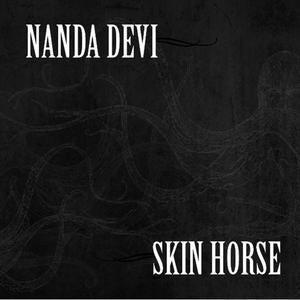 Image of Nanda Devi/Skin Horse Split CD