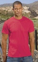Image of AAA Tshirts 6 or 12 pcs