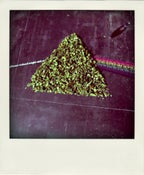"Image of I Like Triangles 12"""
