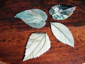 Image of Stone leaf coasters.