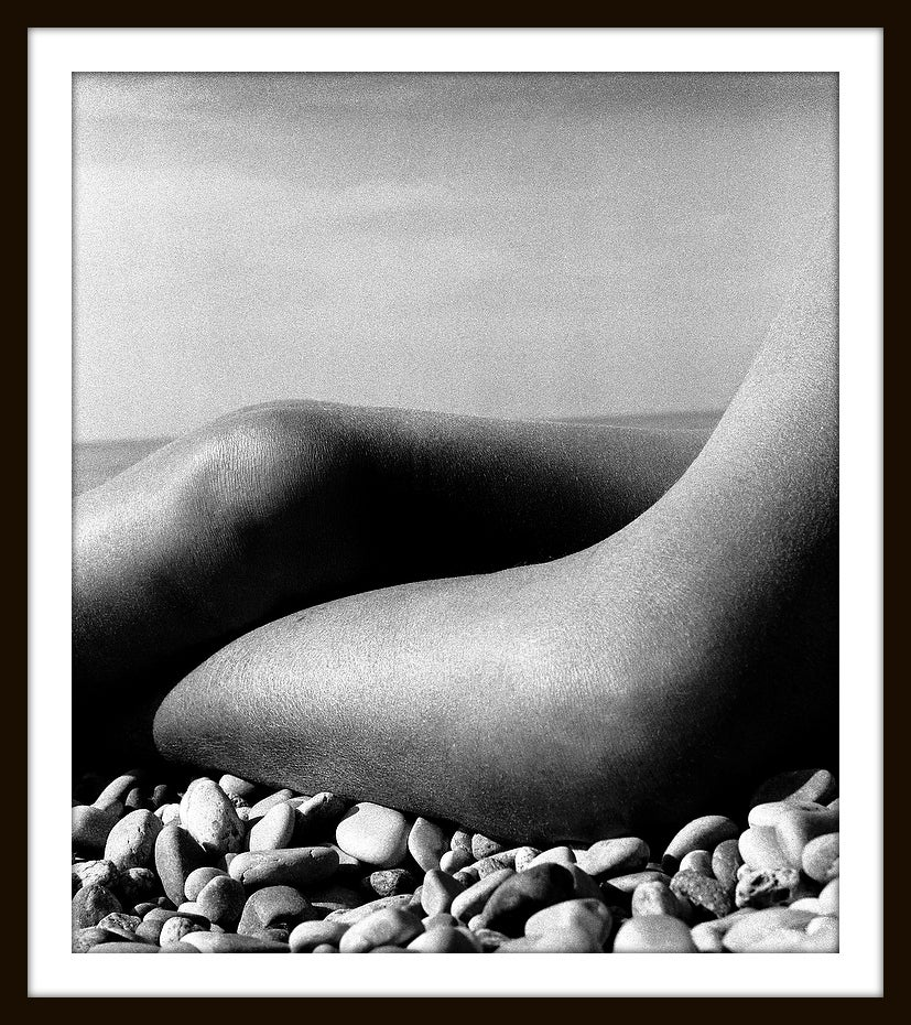 Image of Nude Baie des Anges, 1959  PP13