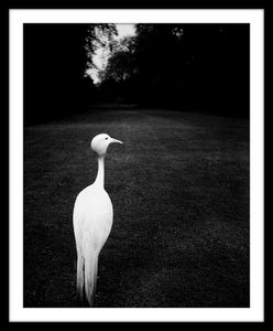 Image of SP21-Early evening, Kew Gardens 1932-5