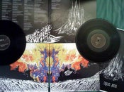 Image of The Sleeping Eye 2xLP (TEMP OUT OF STOCK)