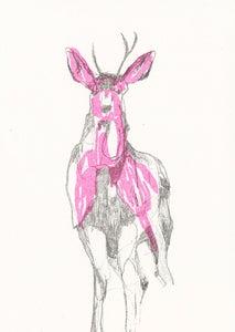 Image of Susie Wright- Fluro Deer