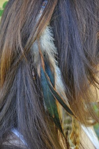 Image of Rooster Feather Hair Clip