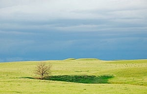 Image of Montana