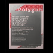 Image of Polygon Poster