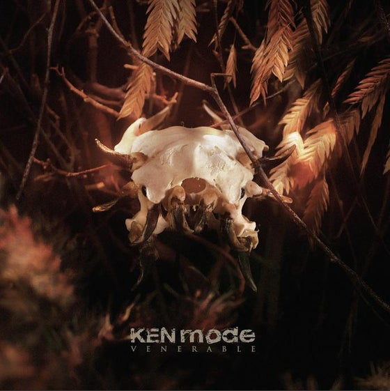 Image of KEN mode - Venerable LP