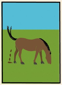 Image of Horse Shit!