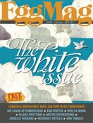 Image of Issue 7 - The White Issue