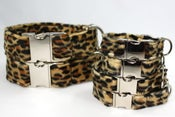Image of Leopard print Dog Collar - dark on UncommonPaws.com