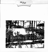 Image of Suzanne Kraft - Missum (CD-R)