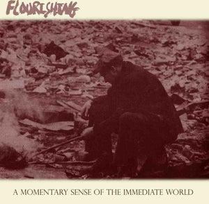 "Image of Flourishing ""A Momentary Sense Of The Immediate World"" CD"