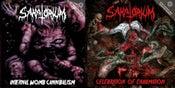 Image of SANATORIUM - Celebration Of Exhumation/Internal Womb Cannibalism 2CD