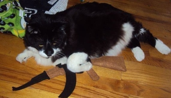 Big Boy Toys Alaska : Oh boy cat toy