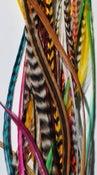 Image of Rainbow Festival Mix