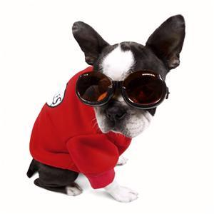 Image of Doggles ILS in the category  on Uncommon Paws.