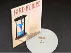 """Image of Limited Edition 12"""" Vinyl - While You Sleep + Digital Download"""